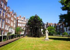 Begijnhof…Amsterdam'ın kalbindeki huzur bahçesi